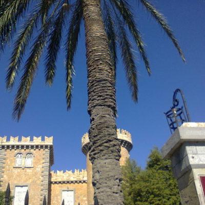 Πύργος Μπελένη